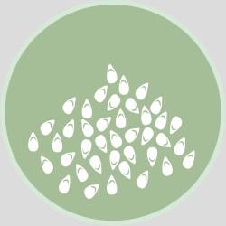 Сусамово семе и продукти от него